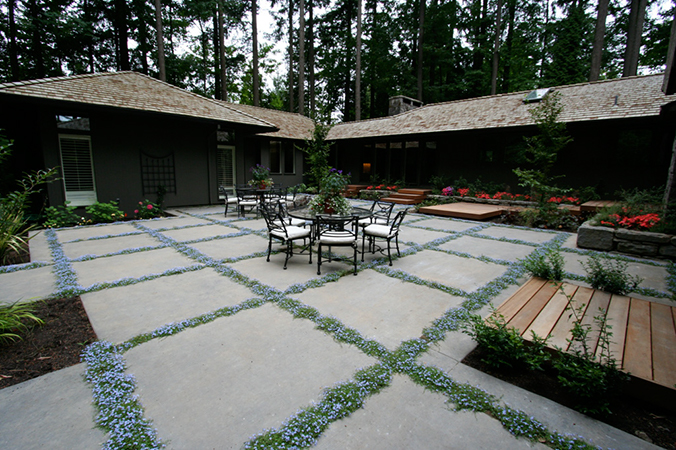 Concrete Patio With Ground Cover